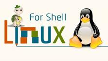 Linux Shell教程(二)